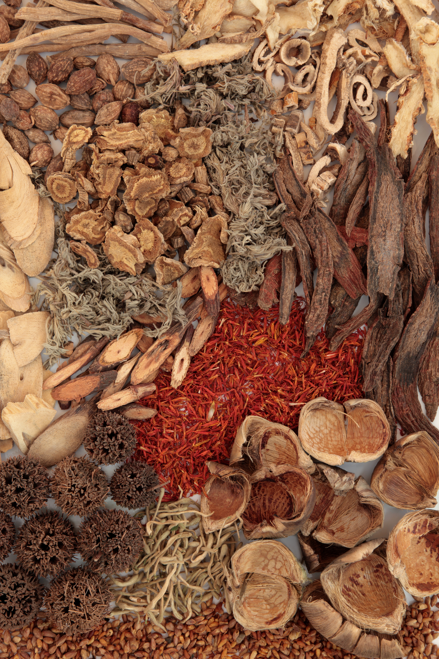 traditional Chinese herbs/ herbal medicine