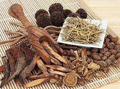 medicinal herbs in cordova tn